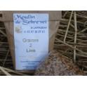 Graines 2 lins